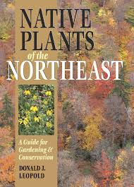 native plants landscaping native plants of the northeast a guide for gardening and