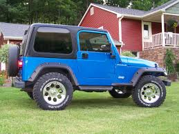 jeep wrangler blue birdsjeep 1999 jeep wranglerse sport utility 2d specs photos