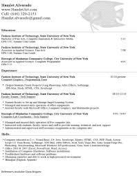 Sample Resume Objectives Computer Programmer by Resume Fine Artist Resume