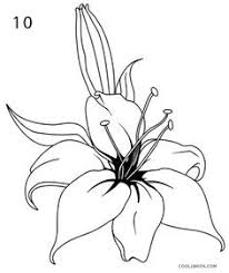 must watch how to draw hibiscus flower youtube flowers