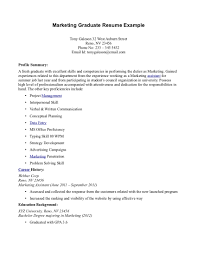 resume fresh graduate marketing