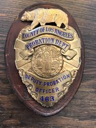 bureau de probation county of los angeles probation dept deputy probation officer leo