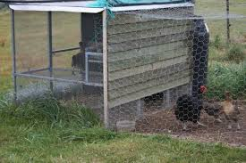 Chickens In The Backyard by How To House Chickens In Your Backyard Owlcation
