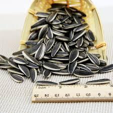 2017 new crop sunflower seeds price per ton buy sunflower seeds