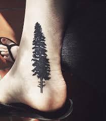 pine tree by gallerypiece on deviantart