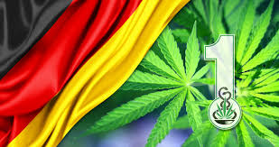 Weed Flag Germany U0027s First Cultivation Permit For Medicinal Cannabis