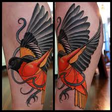 oriole tattoo by dave wah at stay humble tattoo company in