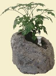 suiseki bonsai miniature rock gardens miniature indoor u0026 outdoor