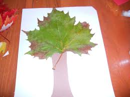 fun preschool activities easy crafts for kids tree with real leaves