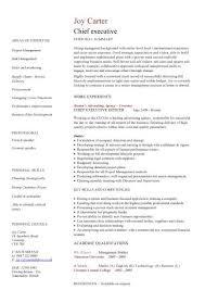 executive resume design executive cv template purchase inside executive resume design