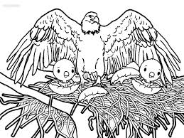 coloring pages eagle flying tags coloring eagle mlk videos