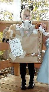 Kitten Halloween Costumes Pet Cardboard Box Costumes Photo Gallery Costumes Halloween Ideas