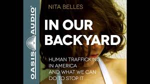 100 backyard america 173 best backyard songbirds images on