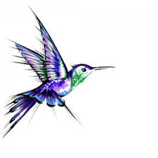 hummingbird tattoos tattoo designs