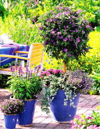 best 25 large garden pots ideas on pinterest outdoor pots and