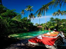 Paradise Pearl Bungalows Thailand Hotels In Phi Phi Islands Page 1 Thailand Travel