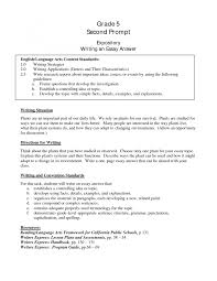 cover letter example of essay introduction example of essay