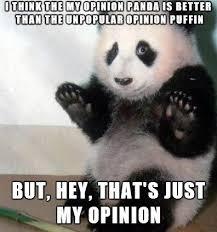 Puffin Meme - the my opinion panda meme