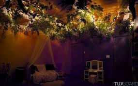 chambre dans un arbre papa arbre chambre fille 13 tuxboard