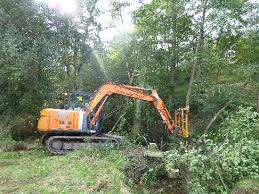 treeclear uk ltd rhododendron clearance specialists