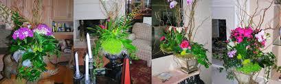 welcome plant designs interior designers creative greenery inc