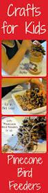 the 25 best pinecone crafts kids ideas on pinterest kids make