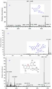 molecules free full text phenolic compounds in chilean