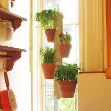 Wall Plant Holders Plant Stand Four Pot Hanging Plant Holder Plants And Gardens