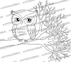 digital stamp owl on branch autumn digi clipart coloring page