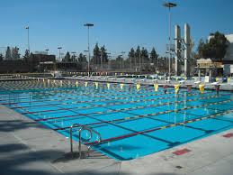 pool construction u0026 renovation services adams pool solutions