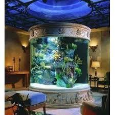 designer aquarium water aquariums service provider importer from ludhiana