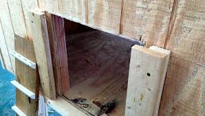how to build a simple chicken coop door with basic chicken house