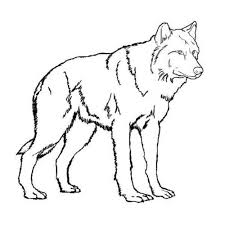 wolf coloring pages walking coloringstar