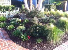 karen u0027s no lawn front yard in california fine gardening