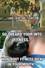 Sloth Fitness Meme - sloth ifunny