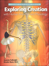 Anatomy And Physiology Games And Puzzles Crossword Exploring Creation With Human Anatomy And Physiology 023169