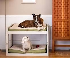 Dog Steps For High Beds Diy Dog Bunk Beds 8 Steps With Pictures
