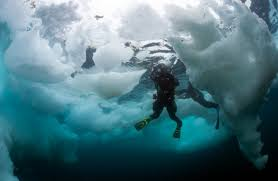 sedna an epic expedition to the arctic ocean reefdivers io