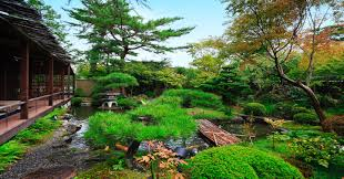 kyoto garden washoku restaurant yachiyo city center restaurant