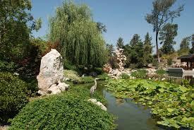 Botanical Gardens Huntington Garden Lagoon Huntington Botanical Gardens 4 Flickr