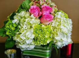 flower shops that deliver 32 photo local flower delivery spectacular garcinia cambogia home