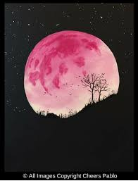 Pink Moon Cheers Pablo