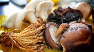 vegan mushroom gravy recipe plantpower holiday cooking how to make gluten free vegan mushroom