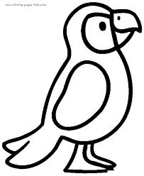 19948 parrot coloring pages gif 525 639 pixels templates
