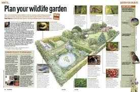 how to start a wildlife garden discover wildlife