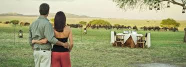 cheap honeymoon cheap honeymoon destinations in africa wildlife safaris