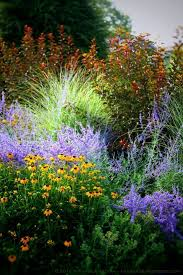 560 best combos images on pinterest landscaping gardens and