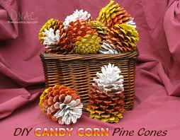 diy candy corn pine cones who needs a cape