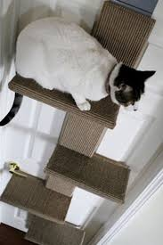 8 best modern cat trees climbing furniture uk images on pinterest