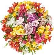 fresh flowers fresh flowers walmart